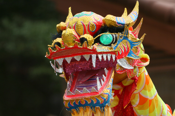 CreativeShot | Best of | Dancing Dragon in Chinese new ...